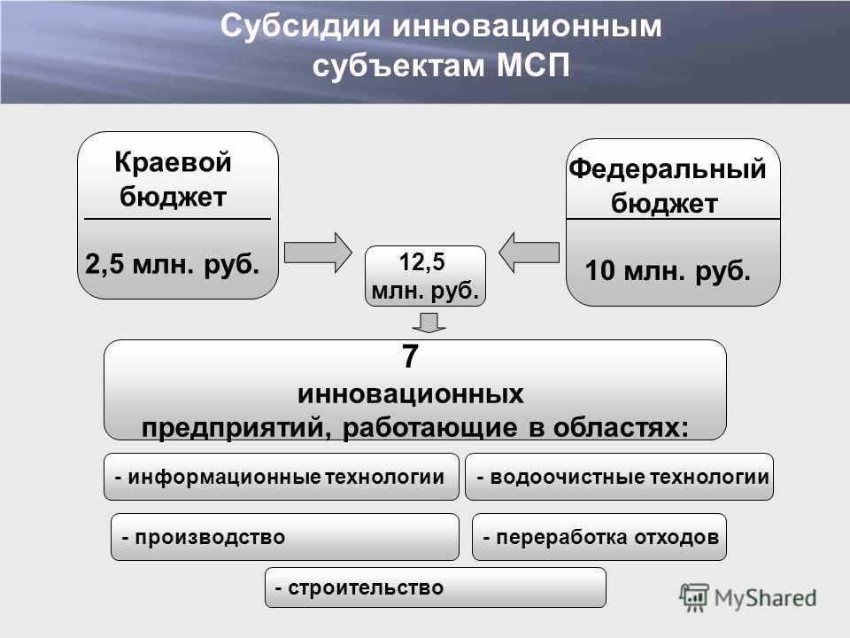 7 инновационных предприятий, работающие в областях: - производство Краевой бюджет 2,5 млн. руб. 12,5 млн. руб. Федеральный бюджет 10 млн. руб. - информационные технологии - строительство - водоочистные технологии - переработка отходов Субсидии иннова