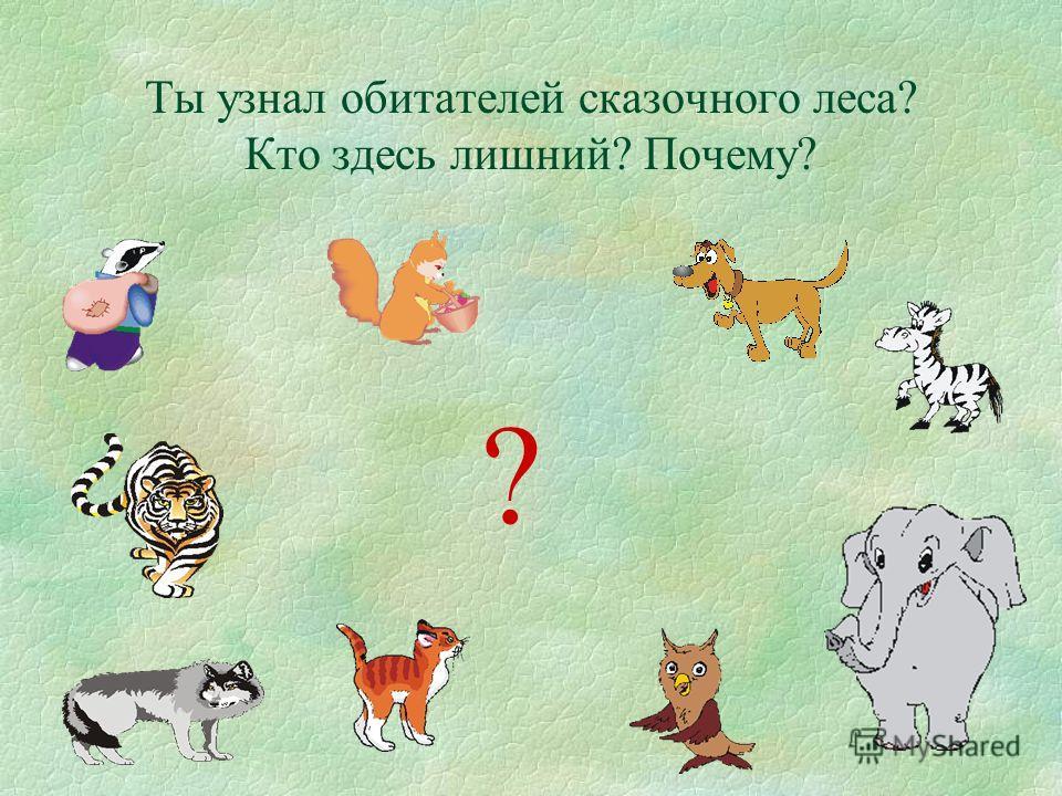 Ты узнал обитателей сказочного леса? Кто здесь лишний? Почему? ?