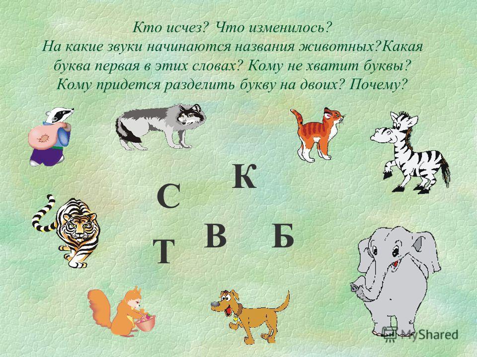 Кто исчез? Что изменилось? На какие звуки начинаются названия животных?Какая буква первая в этих словах? Кому не хватит буквы? Кому придется разделить букву на двоих? Почему? Т Б К С В
