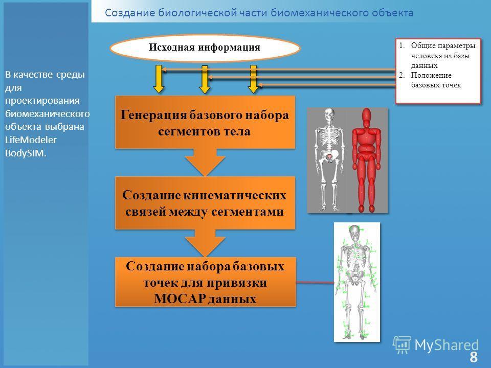 Создание биологической части биомеханического объекта Исходная информация 1.Общие параметры человека из базы данных 2.Положение базовых точек 1.Общие параметры человека из базы данных 2.Положение базовых точек Генерация базового набора сегментов тела