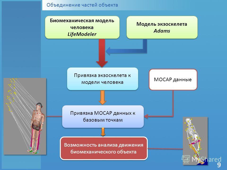 Объединение частей объекта Биомеханическая модель человека LifeModeler Биомеханическая модель человека LifeModeler Модель экзоскелета Adams Модель экзоскелета Adams Привязка экзоскелета к модели человека MOCAP данные Привязка MOCAP данных к базовым т