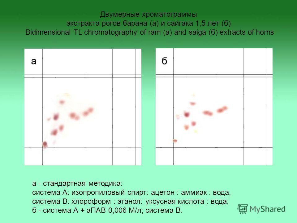Двумерные хроматограммы экстракта рогов барана (а) и сайгака 1,5 лет (б) Bidimensional TL chromatography of ram (а) and saiga (б) extracts of horns а - стандартная методика: система А: изопропиловый спирт: ацетон : аммиак : вода, система В: хлороформ