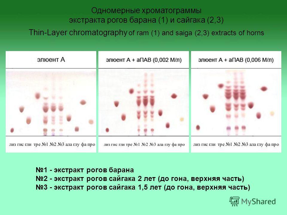 1 - экстракт рогов барана 2 - экстракт рогов сайгака 2 лет (до гона, верхняя часть) 3 - экстракт рогов сайгака 1,5 лет (до гона, верхняя часть) Одномерные хроматограммы экстракта рогов барана (1) и сайгака (2,3) Thin-Layer chromatography of ram (1) a