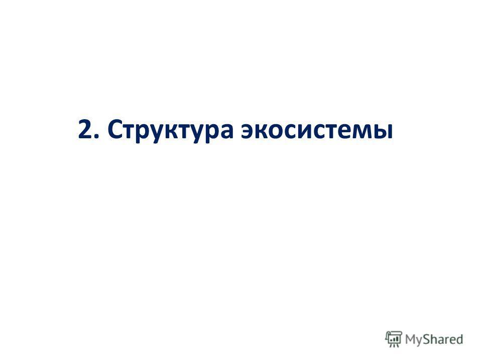 2. Структура экосистемы
