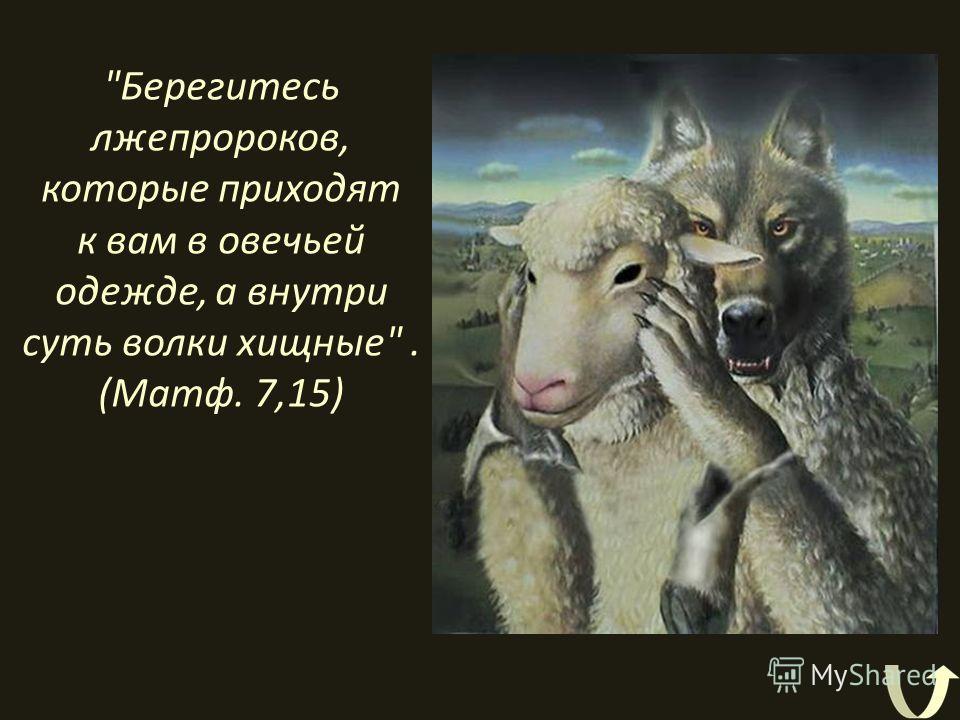 Берегитесь лжепророков, которые приходят к вам в овечьей одежде, а внутри суть волки хищные. (Матф. 7,15)
