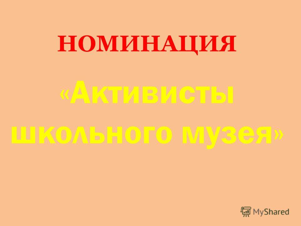 НОМИНАЦИЯ «Активисты школьного музея»