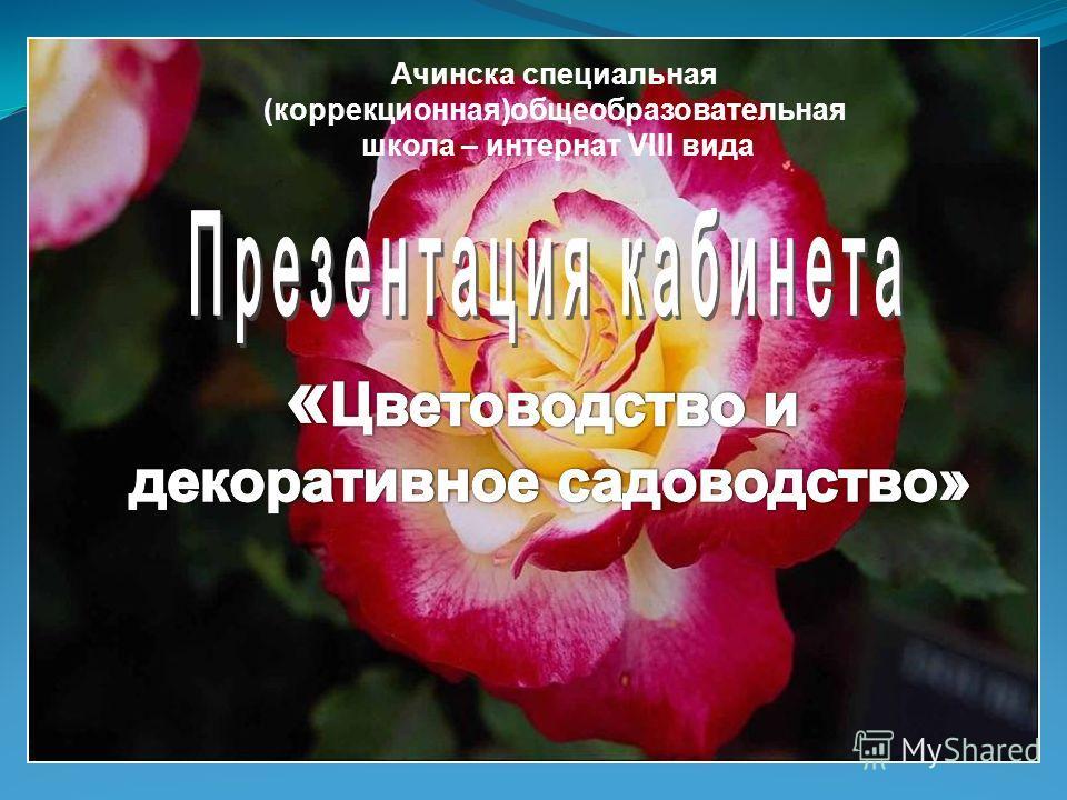 Ачинска специальная (коррекционная)общеобразовательная школа – интернат VIII вида