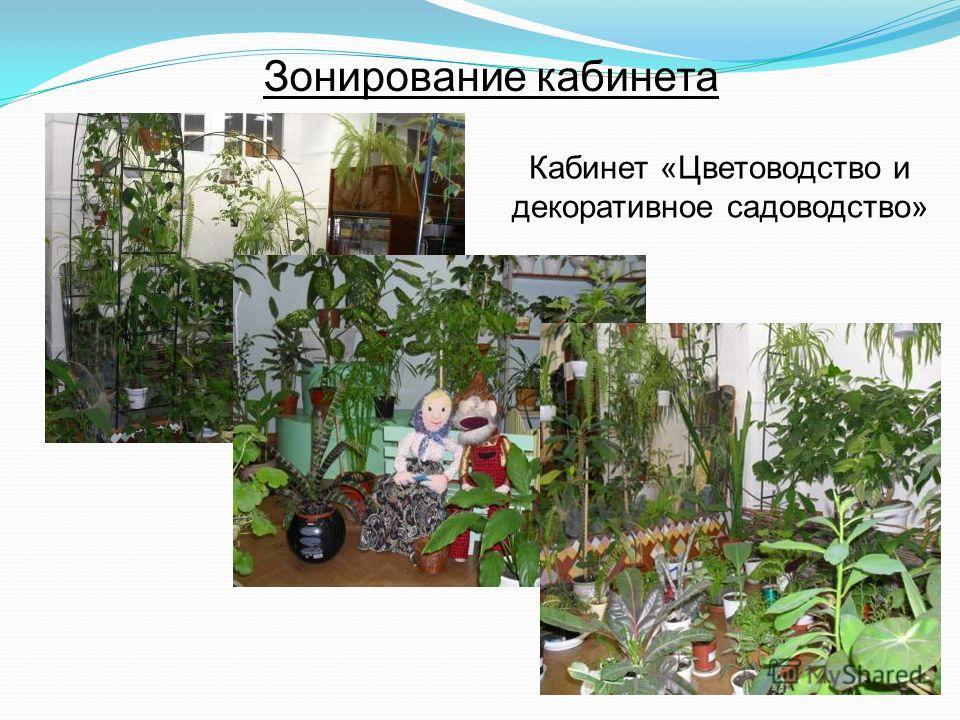 Зонирование кабинета Кабинет «Цветоводство и декоративное садоводство»