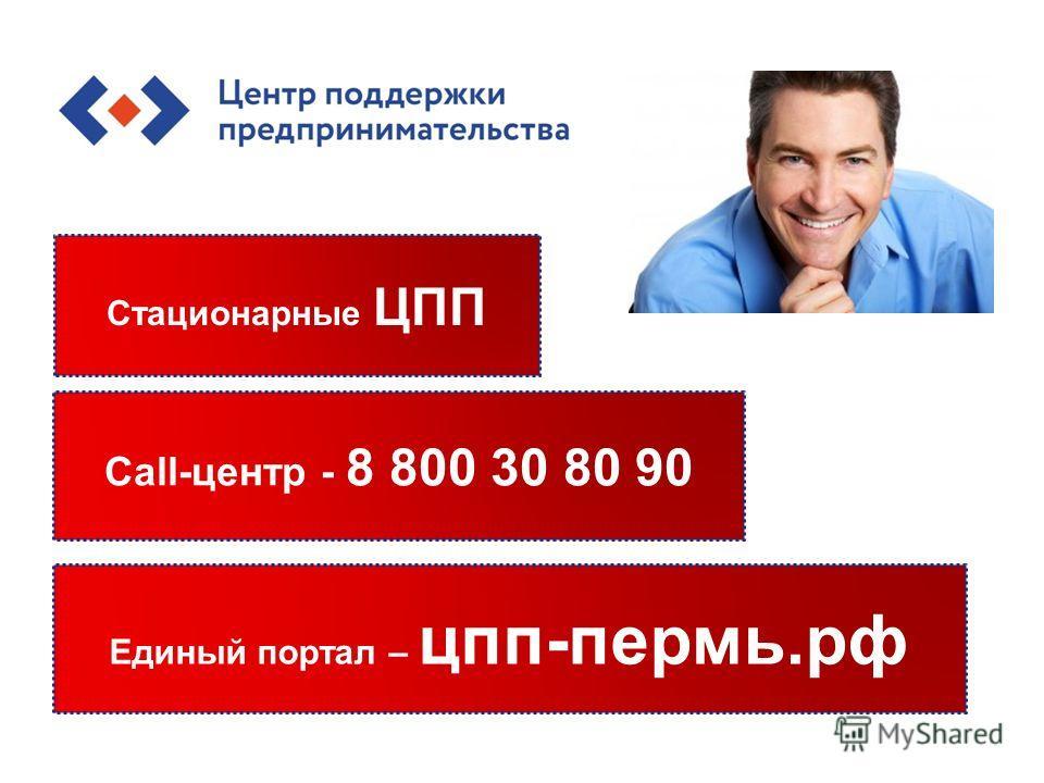 Стационарные ЦПП Единый портал – цпп-пермь.рф Call-центр - 8 800 30 80 90
