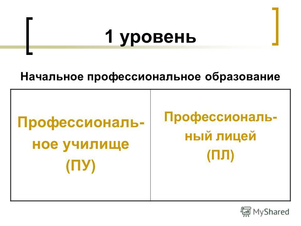 1 уровень Начальное профессиональное образование Профессиональ- ное училище (ПУ) Профессиональ- ный лицей (ПЛ)