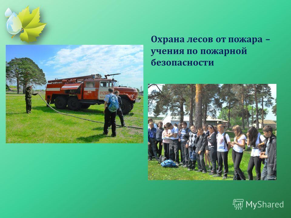 Охрана лесов от пожара – учения по пожарной безопасности 3