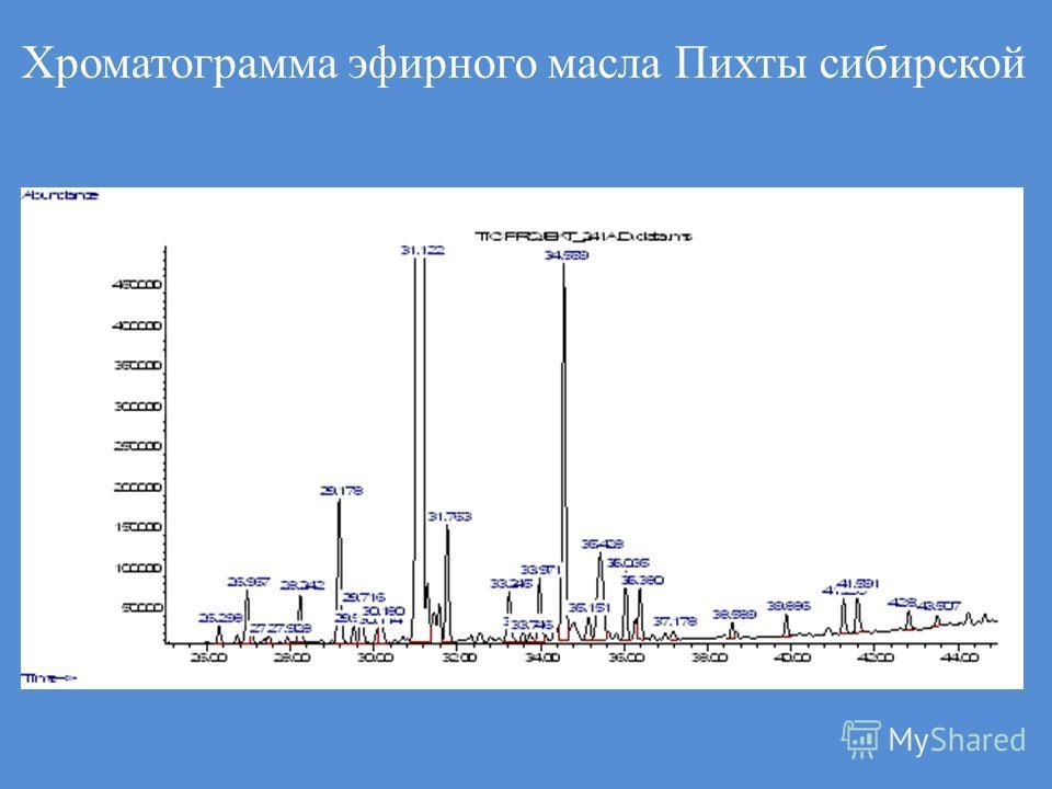 Хроматограмма эфирного масла Пихты сибирской