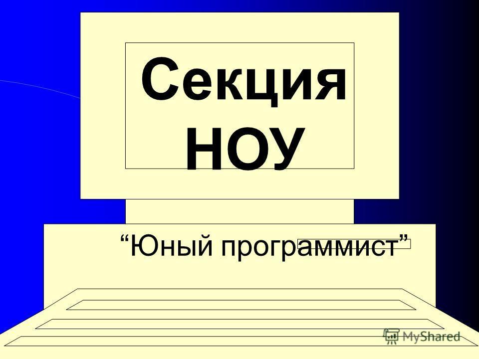 Секция НОУ Юный программист