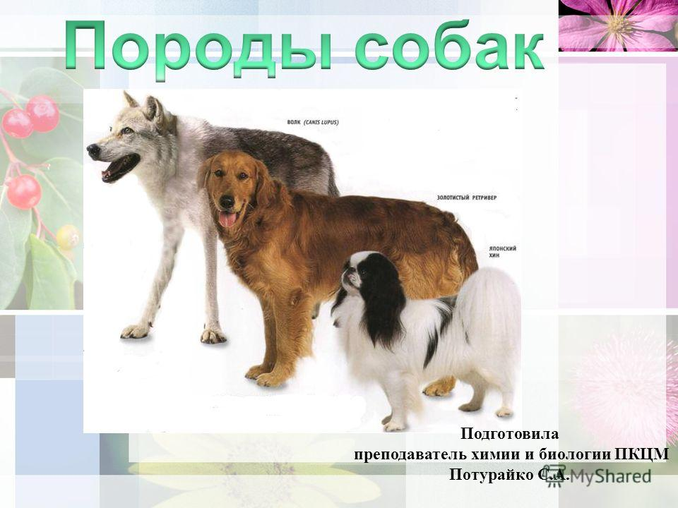 Подготовила преподаватель химии и биологии ПКЦМ Потурайко С.А.