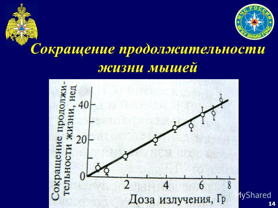 14 Сокращение продолжительности жизни мышей