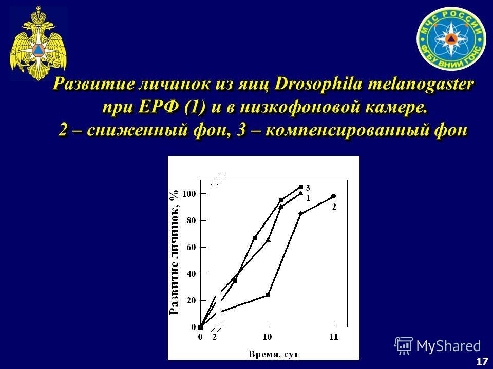 17 Развитие личинок из яиц Drosophila melanogaster при ЕРФ (1) и в низкофоновой камере. 2 – сниженный фон, 3 – компенсированный фон