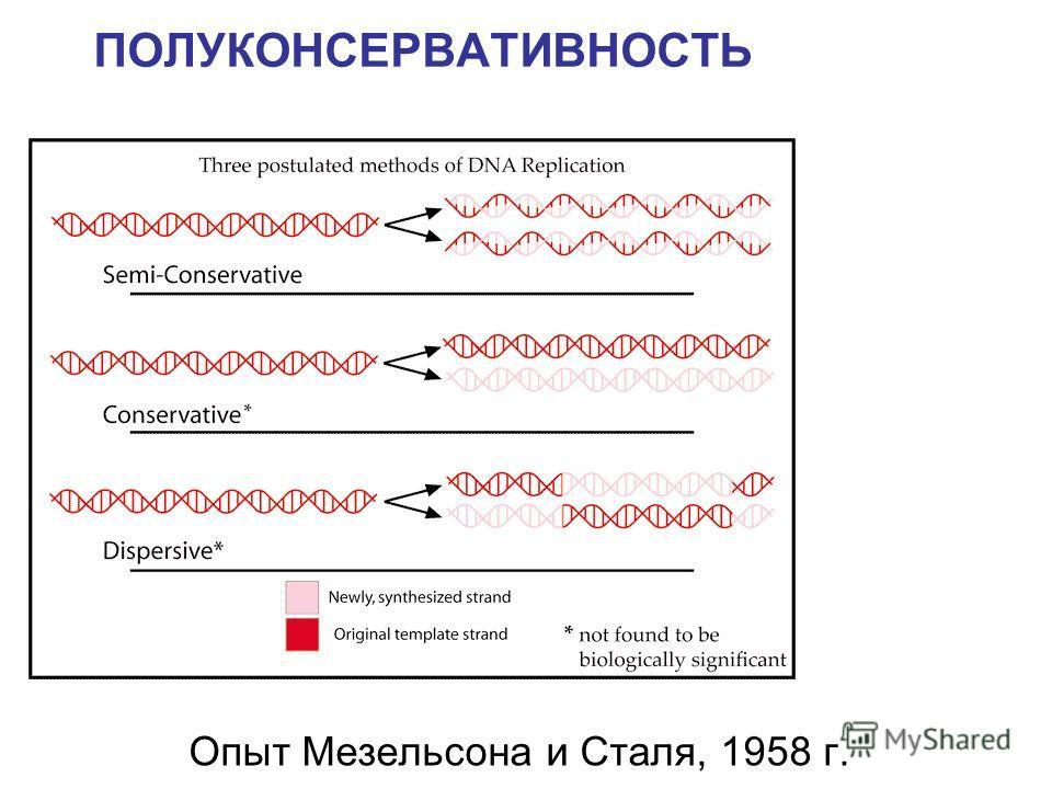 Опыт Мезельсона и Сталя, 1958 г. ПОЛУКОНСЕРВАТИВНОСТЬ