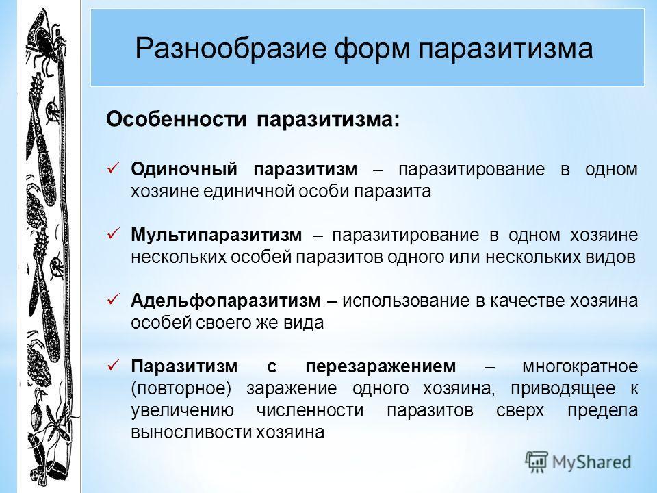 Разнообразие форм паразитизма Особенности паразитизма: Одиночный паразитизм – паразитирование в одном хозяине единичной особи паразита Мультипаразитизм – паразитирование в одном хозяине нескольких особей паразитов одного или нескольких видов Адельфоп
