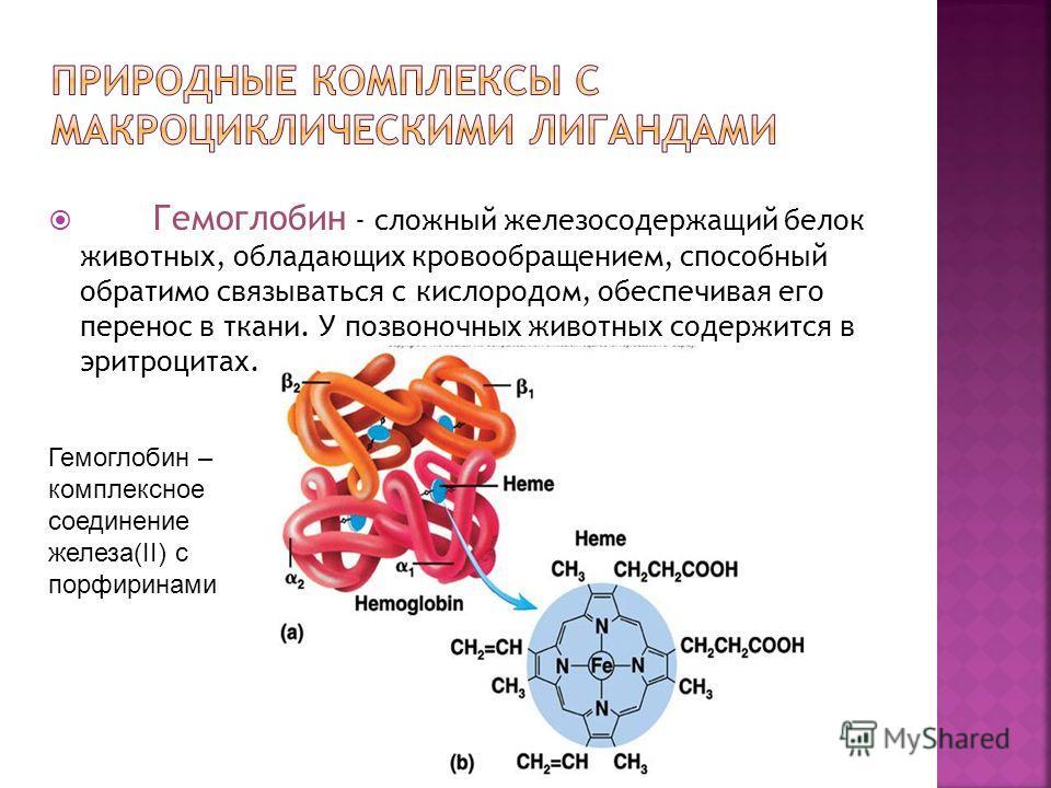 Гемоглобин - сложный железосодержащий белок животных, обладающих кровообращением, способный обратимо связываться с кислородом, обеспечивая его перенос в ткани. У позвоночных животных содержится в эритроцитах. Гемоглобин – комплексное соединение желез