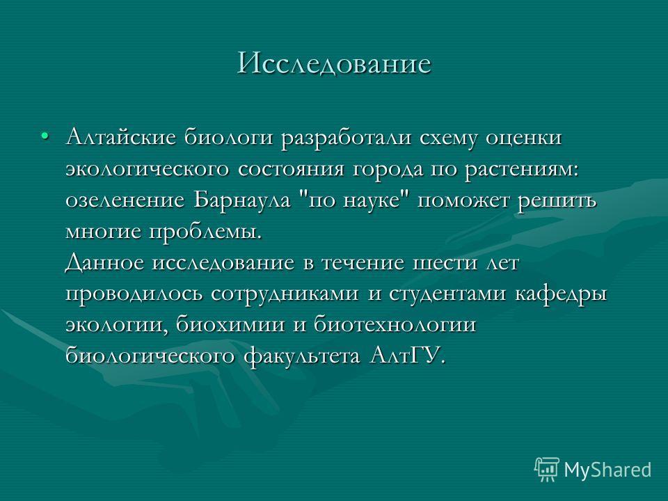 Исследование Алтайские биологи разработали схему оценки экологического состояния города по растениям: озеленение Барнаула