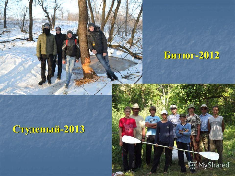 Битюг-2012 Студеный-2013
