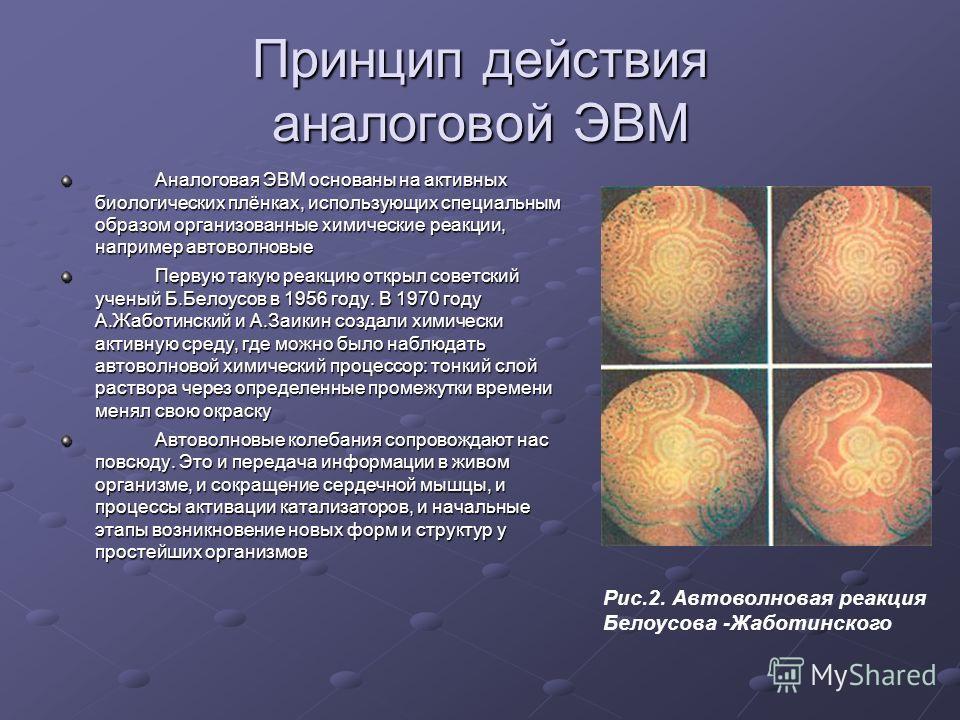 Принцип действия аналоговой ЭВМ Аналоговая ЭВМ основаны на активных биологических плёнках, использующих специальным образом организованные химические реакции, например автоволновые Первую такую реакцию открыл советский ученый Б.Белоусов в 1956 году.