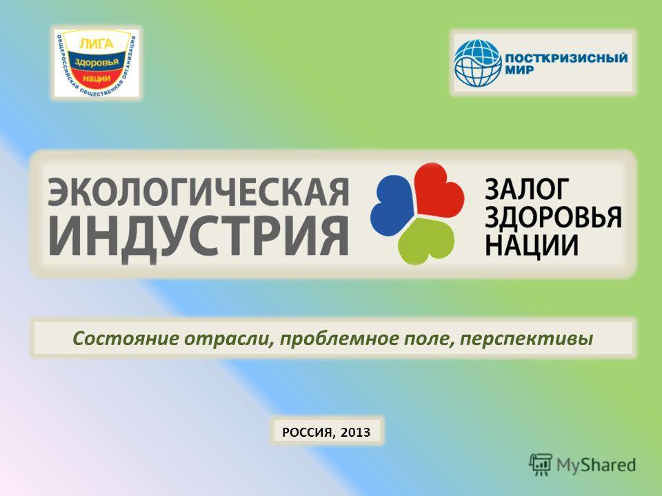 РОССИЯ, 2013 Состояние отрасли, проблемное поле, перспективы