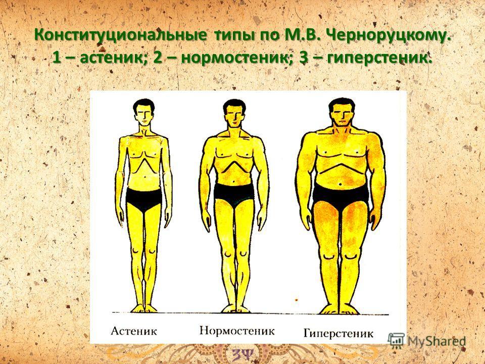 Конституциональные типы по М.В. Черноруцкому. 1 – астеник; 2 – нормостеник; 3 – гиперстеник.