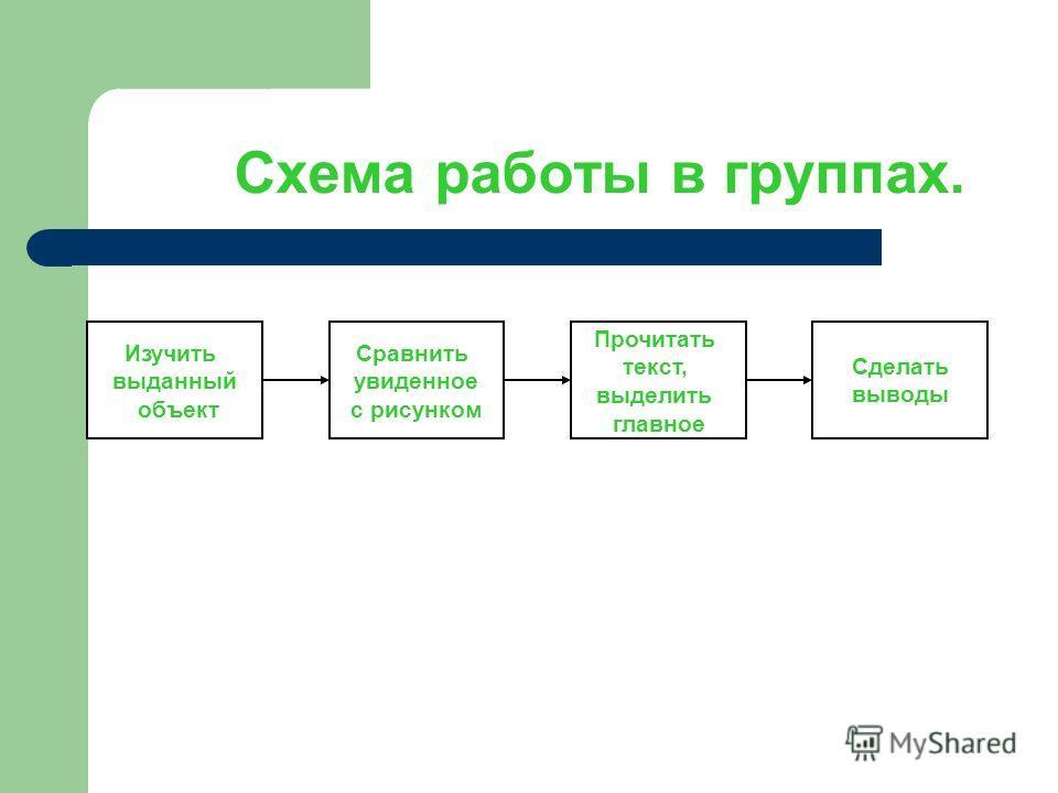 Схема работы в группах. Изучить выданный объект Сравнить увиденное с рисунком Прочитать текст, выделить главное Сделать выводы