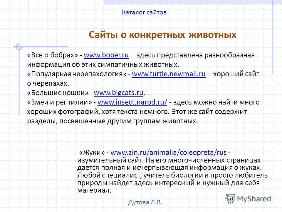 Сайты о конкретных животных «Жуки» - www.zin.ru/animalia/coleopreta/rus - изумительный сайт. На его многочисленных страницах дается полная и исчерпывающая информация о жуках. Любой специалист, учитель биологии и просто любитель природы найдет здесь и