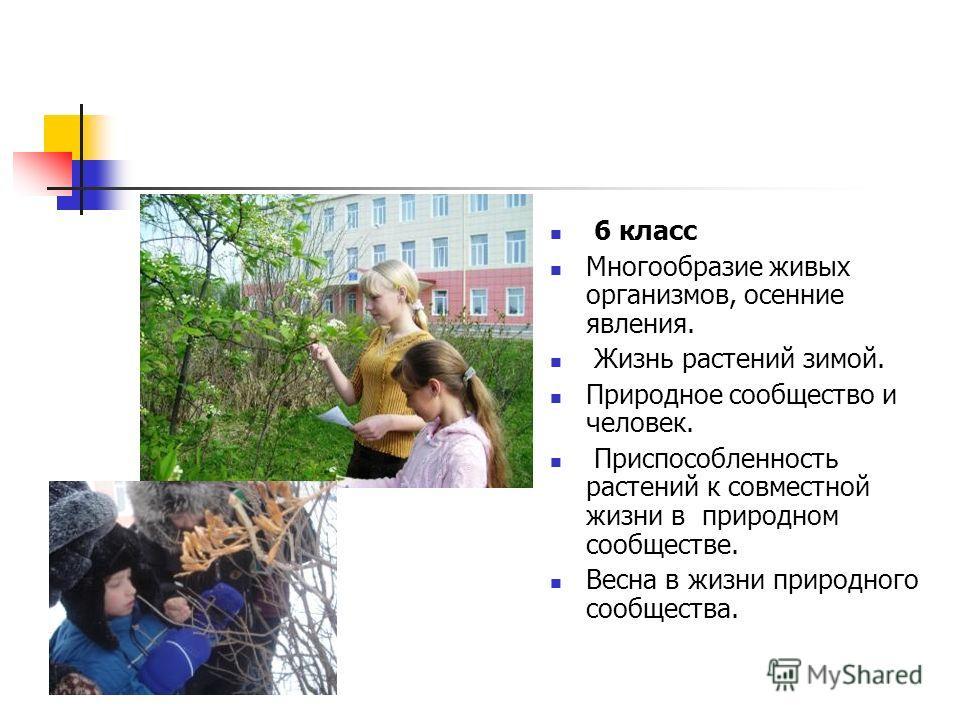 6 класс Многообразие живых организмов, осенние явления. Жизнь растений зимой. Природное сообщество и человек. Приспособленность растений к совместной жизни в природном сообществе. Весна в жизни природного сообщества.