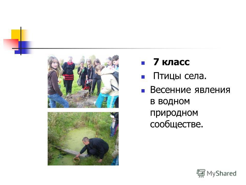 7 класс Птицы села. Весенние явления в водном природном сообществе.