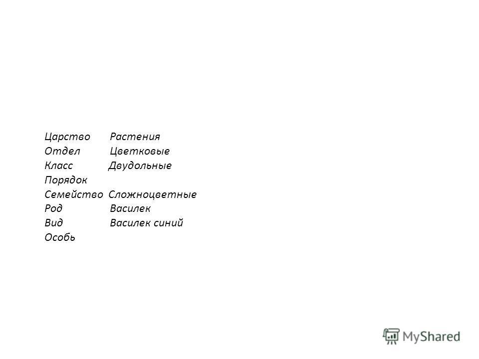 Царство Растения Отдел Цветковые Класс Двудольные Порядок Семейство Сложноцветные Род Василек Вид Василек синий Особь