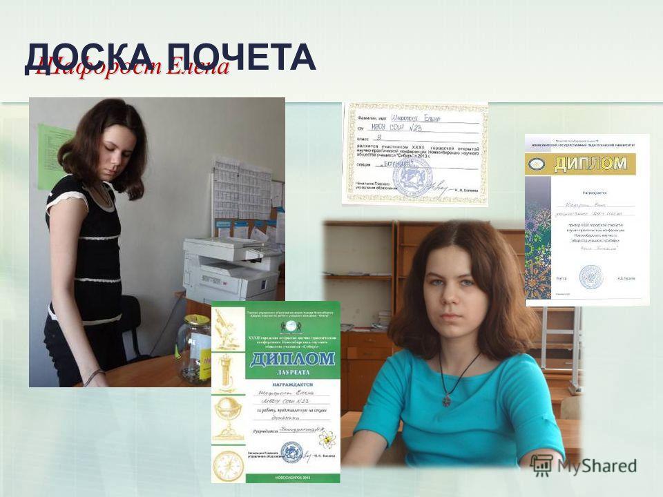 Шафорост Елена ДОСКА ПОЧЕТА