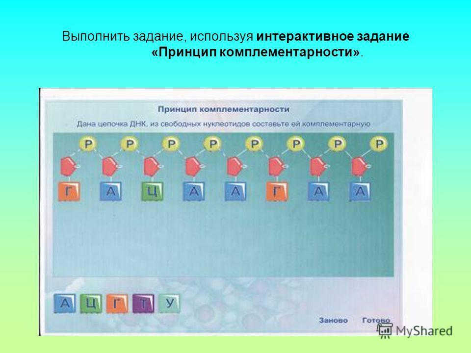 Выполнить задание, используя интерактивное задание «Принцип комплементарности».