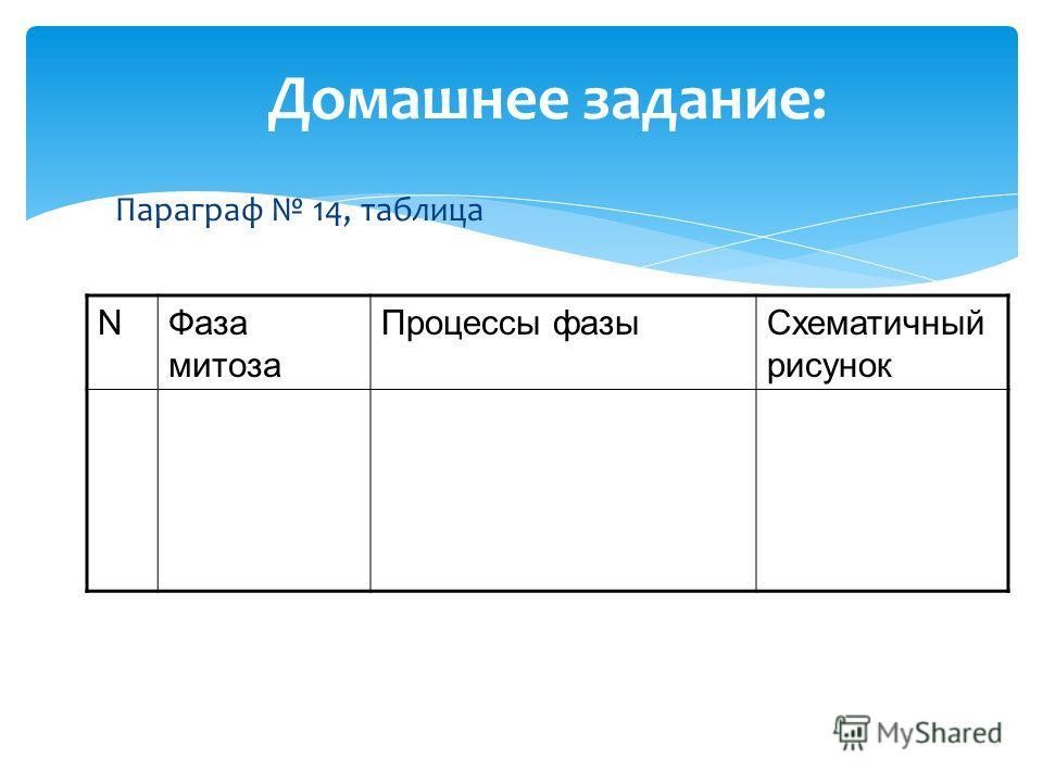 Домашнее задание: Параграф 14, таблица NФаза митоза Процессы фазыСхематичный рисунок