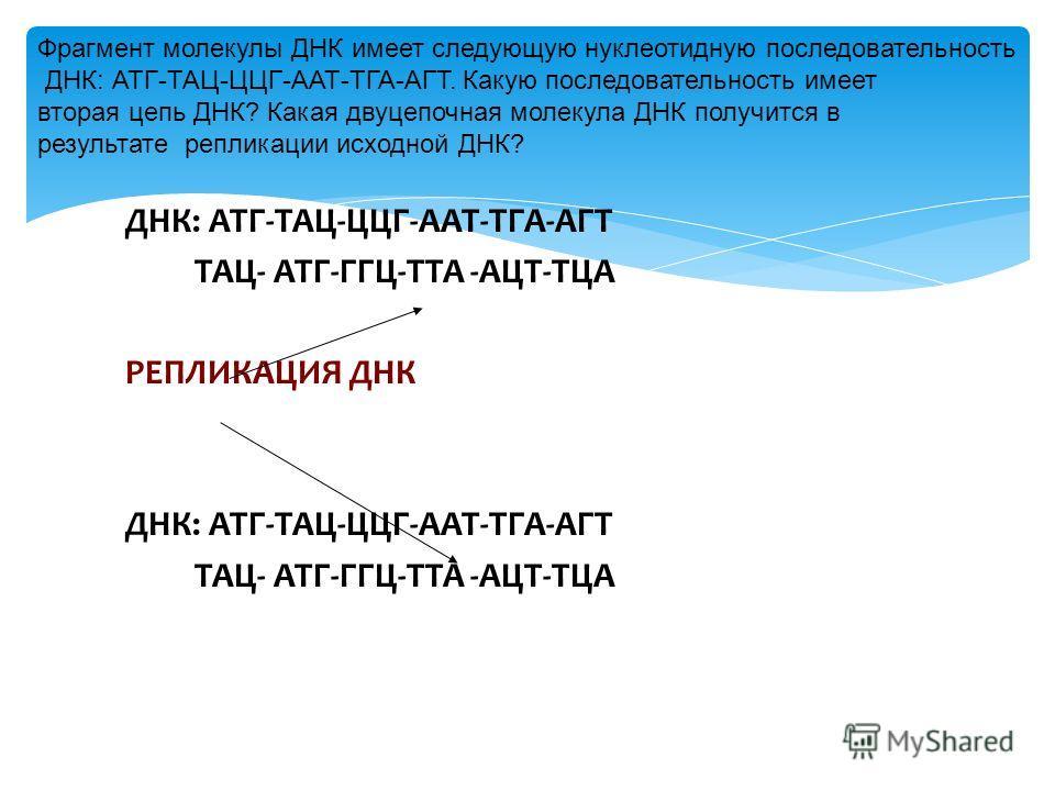 ДНК: АТГ-ТАЦ-ЦЦГ-ААТ-ТГА-АГТ ТАЦ- АТГ-ГГЦ-ТТА -АЦТ-ТЦА РЕПЛИКАЦИЯ ДНК ДНК: АТГ-ТАЦ-ЦЦГ-ААТ-ТГА-АГТ ТАЦ- АТГ-ГГЦ-ТТА -АЦТ-ТЦА Фрагмент молекулы ДНК имеет следующую нуклеотидную последовательность ДНК: АТГ-ТАЦ-ЦЦГ-ААТ-ТГА-АГТ. Какую последовательность