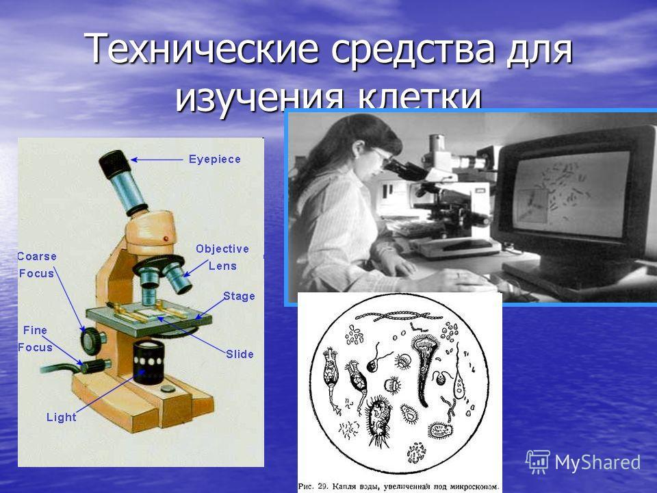 Технические средства для изучения клетки