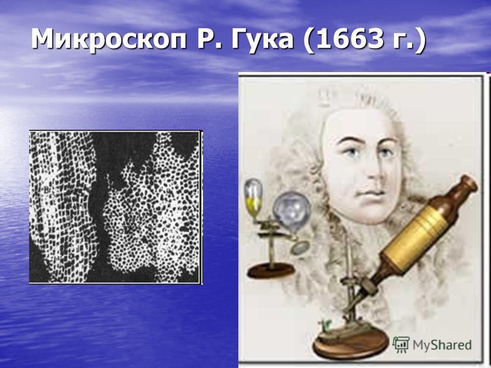 Микроскоп Р. Гука (1663 г.)