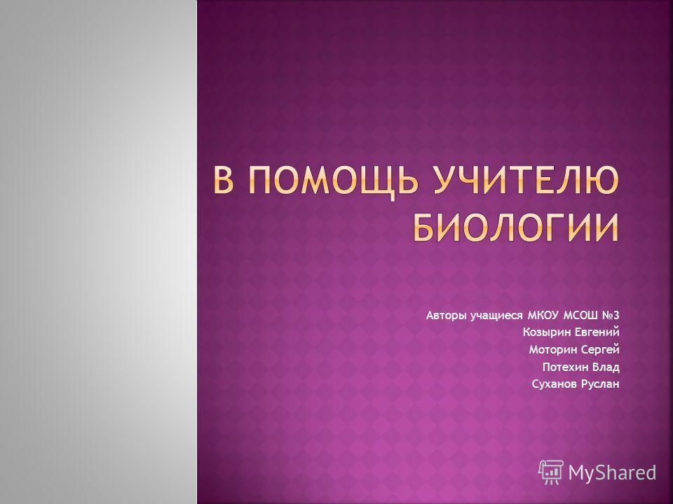 Авторы учащиеся МКОУ МСОШ 3 Козырин Евгений Моторин Сергей Потехин Влад Суханов Руслан