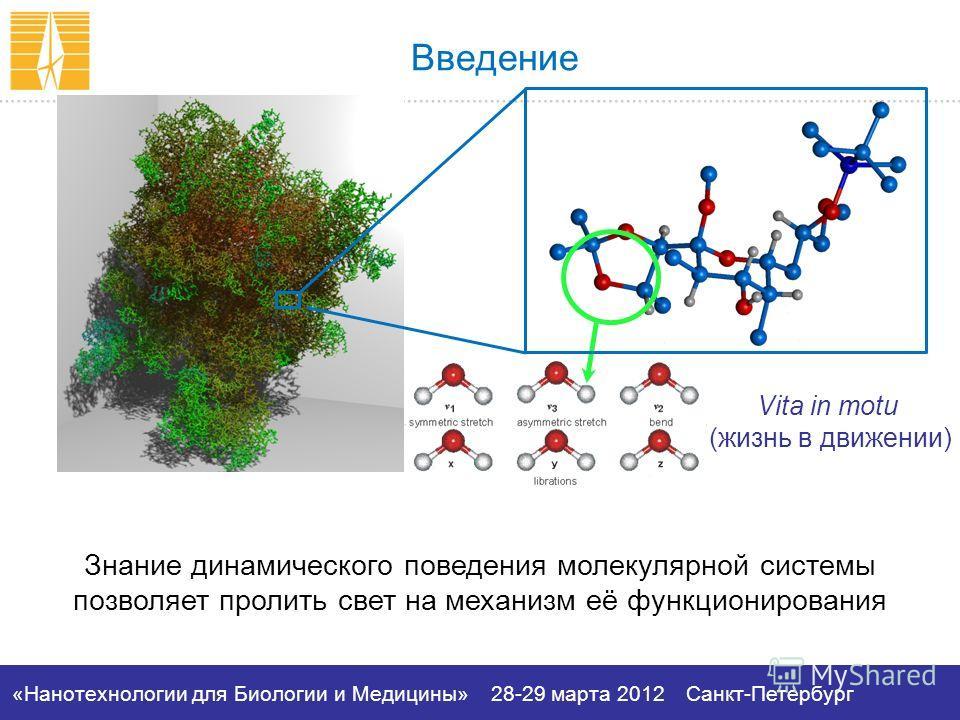 «Нанотехнологии для Биологии и Медицины»28-29 марта 2012Санкт-Петербург Vita in motu (жизнь в движении) Введение Знание динамического поведения молекулярной системы позволяет пролить свет на механизм её функционирования