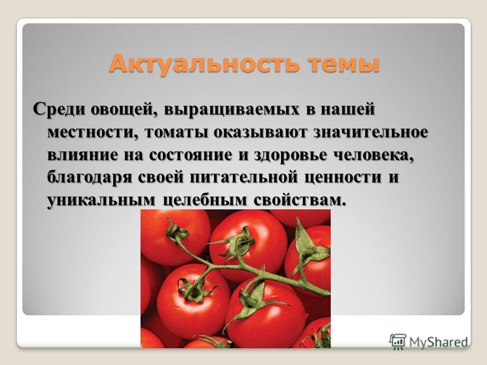 Актуальность темы Среди овощей, выращиваемых в нашей местности, томаты оказывают значительное влияние на состояние и здоровье человека, благодаря своей питательной ценности и уникальным целебным свойствам.