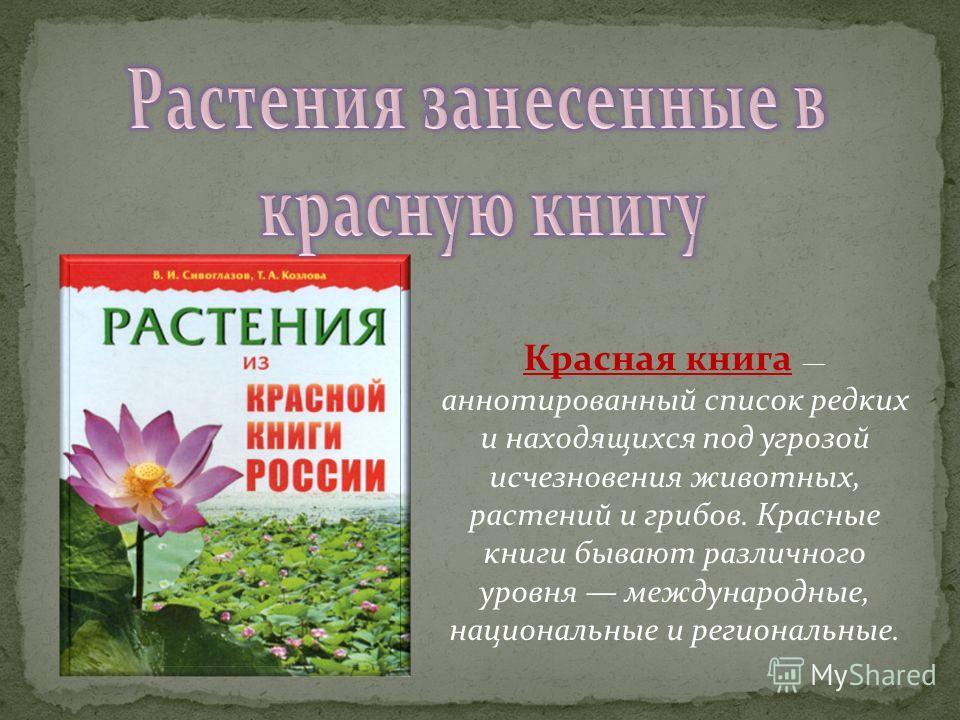 Красная книга аннотированный список редких и находящихся под угрозой исчезновения животных, растений и грибов. Красные книги бывают различного уровня международные, национальные и региональные.