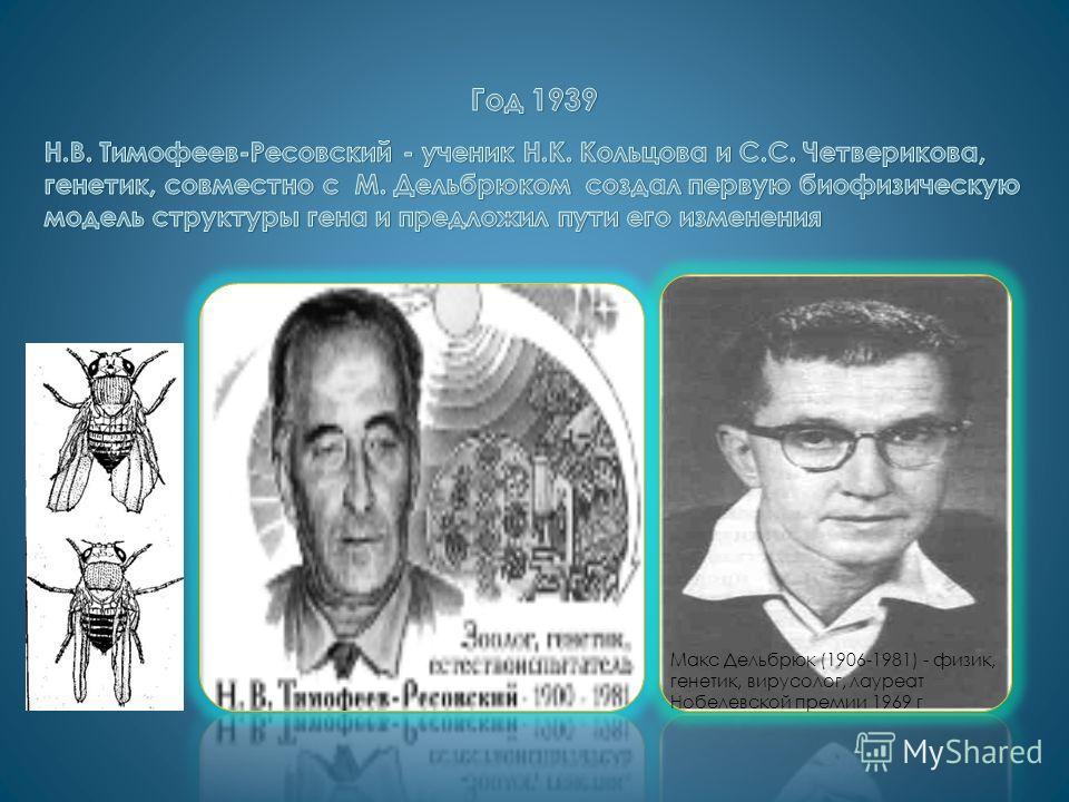 Макс Дельбрюк (1906-1981) - физик, генетик, вирусолог, лауреат Нобелевской премии 1969 г