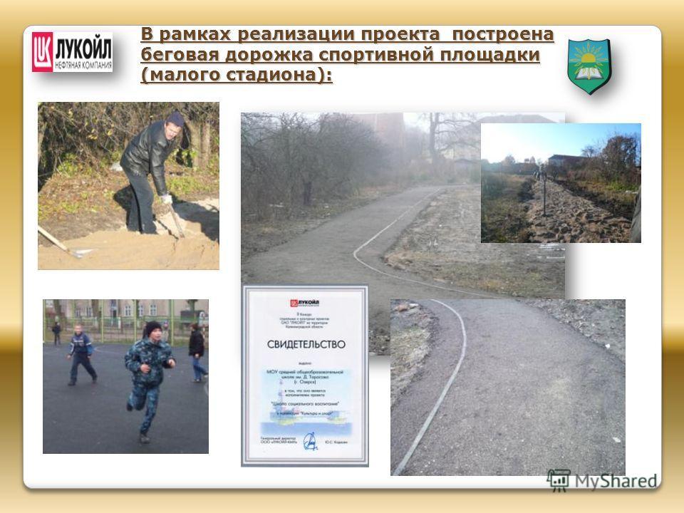 В рамках реализации проекта построена беговая дорожка спортивной площадки (малого стадиона):