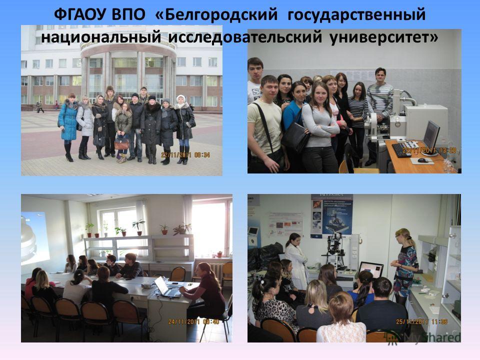 ФГАОУ ВПО «Белгородский государственный национальный исследовательский университет»
