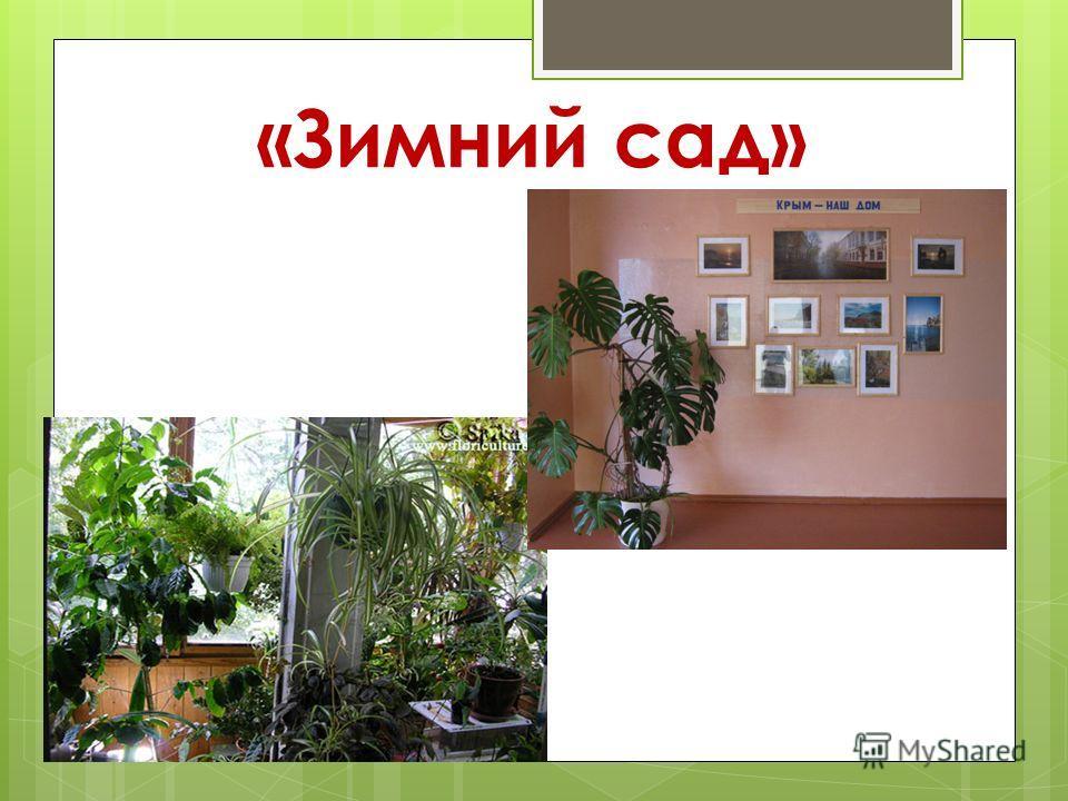 «Зимний сад»