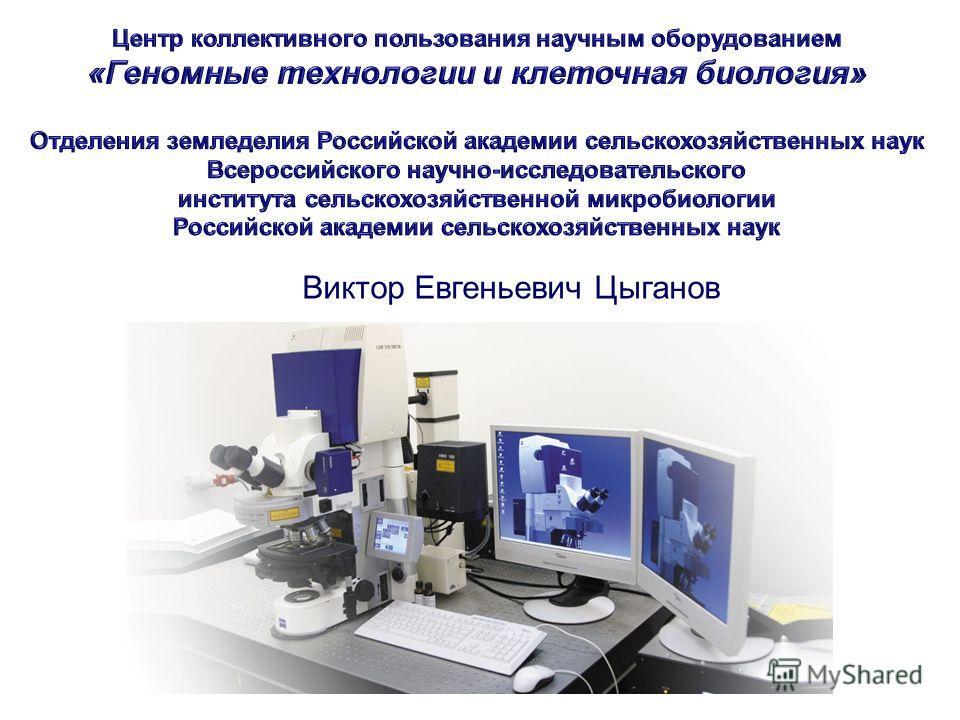 Виктор Евгеньевич Цыганов
