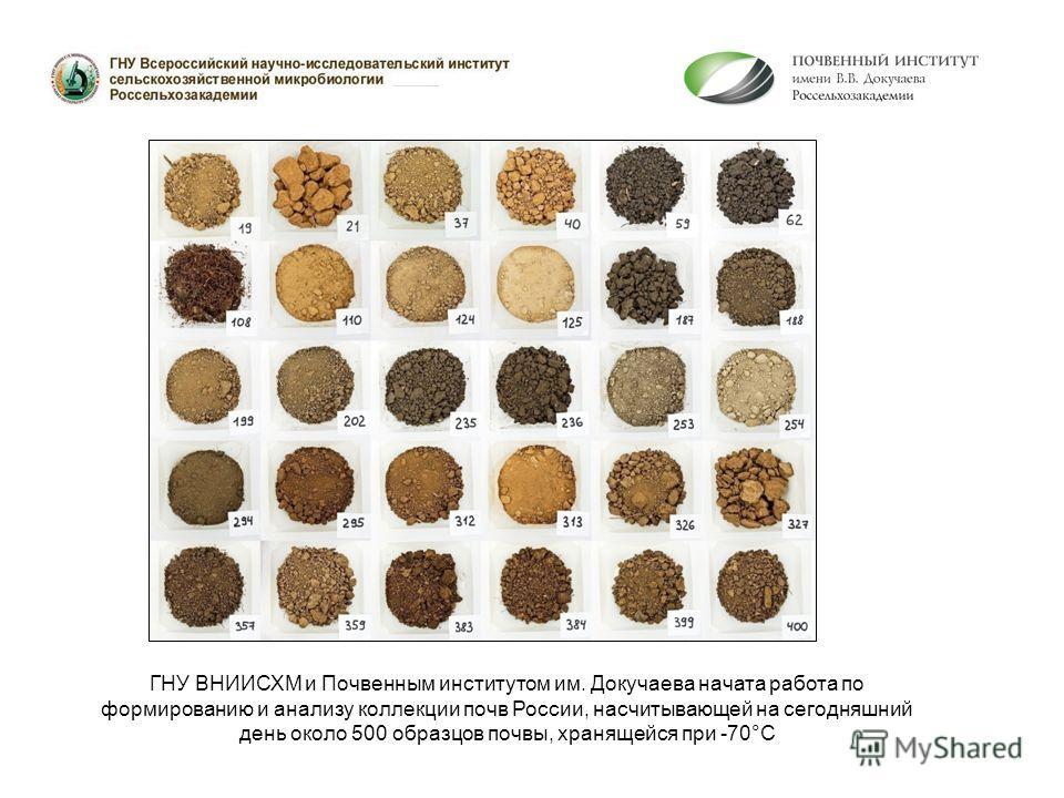 ГНУ ВНИИСХМ и Почвенным институтом им. Докучаева начата работа по формированию и анализу коллекции почв России, насчитывающей на сегодняшний день около 500 образцов почвы, хранящейся при -70°С