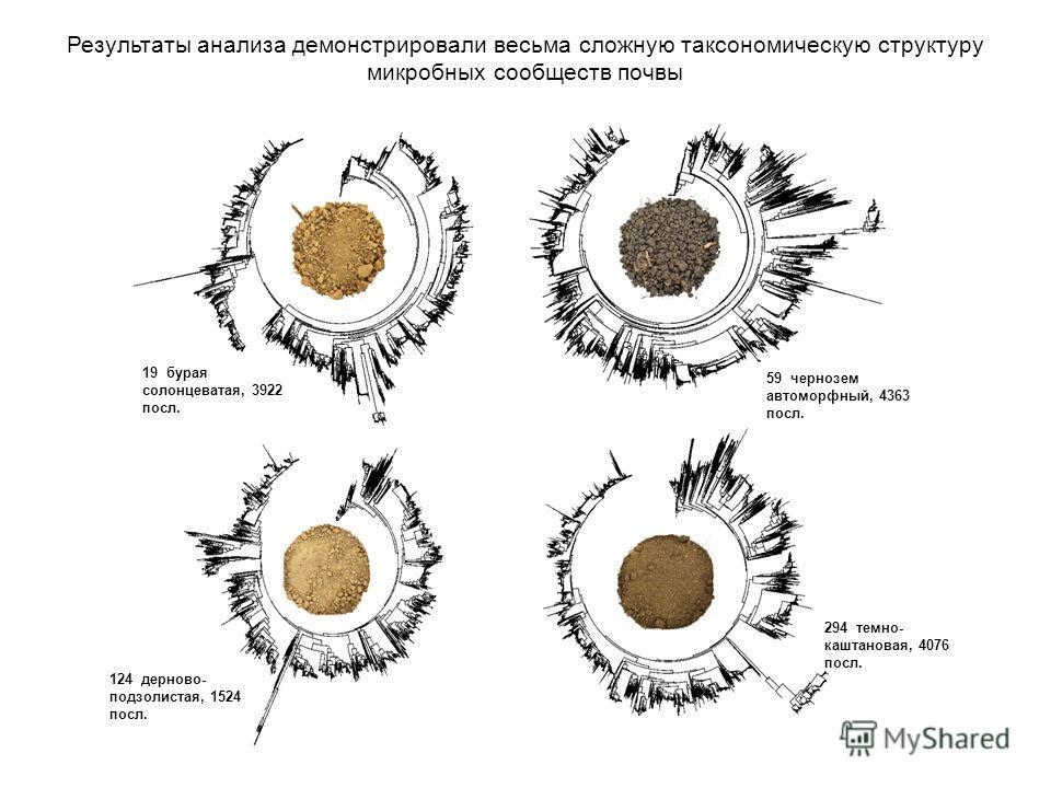 19 бурая солонцеватая, 3922 посл. 59 чернозем автоморфный, 4363 посл. 124 дерново- подзолистая, 1524 посл. 294 темно- каштановая, 4076 посл. Результаты анализа демонстрировали весьма сложную таксономическую структуру микробных сообществ почвы